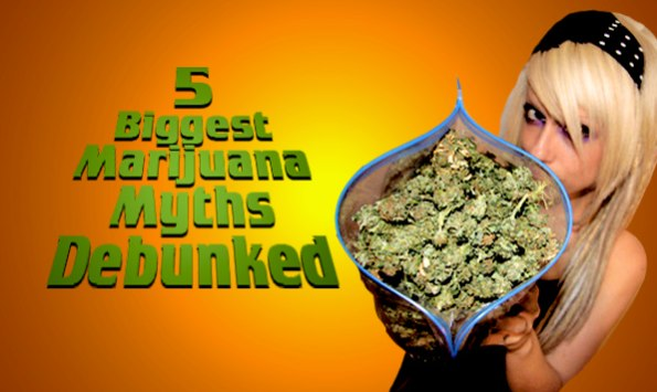 WHAT ARE YOU SMOKING?? Five Myths About Legalizing Marijuana – Secrets of the Fed