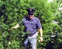 Growing marijuana in Italy made into administrative offence | La Gazzetta del Mezzogiorno.it-1