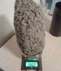 Here have a 446.3 gram nug _ pikdit